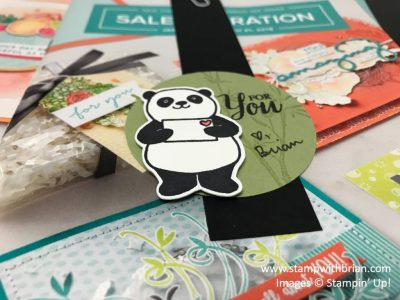 Party Pandas, Artisitically Asian, So Many Shells, Stampin' Up!, Brian King