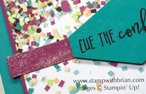 Apply Wink of Stella Glitter Brush to cardstock for a sparkly finish, Stampin' Up!, Brian King