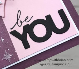 Magical Day, Happy Wishes, Stampin' Up!, Brian King, FabFri129 3