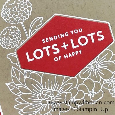 Accented Blooms, Lots of Happy Card Kit, Tailored Tag punch, Stampin' Up!, Brian King