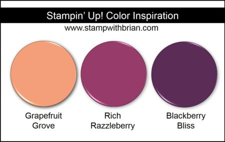 Stampin' Up! Color Inspiration: Grapefruit Grove, Rich Razzleberry, Blackberry Bliss