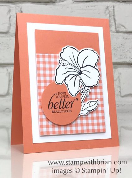 Humming Along, Gingham Gala Designer Series Paper, Stampin' Up!, Brian King, get well card