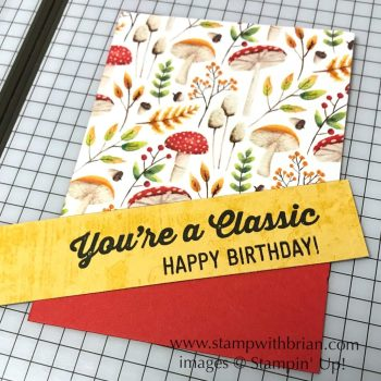 Tips for using diagonals on a card, Stampin' Up!, Brian King