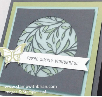 Simply Wonderful, Nature's Perfection, Sheer Perfection Designer Vellum Stack, Stampin' Up!, Brian King