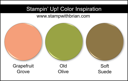 Stampin' Up! Color Inspiration - Grapefruit Grove, Old Olive, Soft Suede