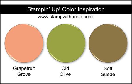 Stampin' Up! Color Inspiration - Grapefruit Grove, Old Olive, Soft Suede