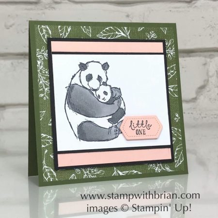 Wildly Happy, Stampin' Up!, Brian King, baby card