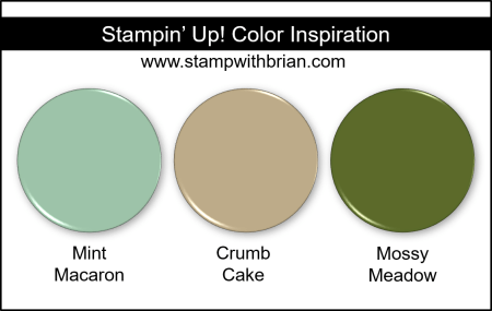 Stampin' Up! Color Inspiration - MInt Macaron, Crumb Cake, Mossy Meadow