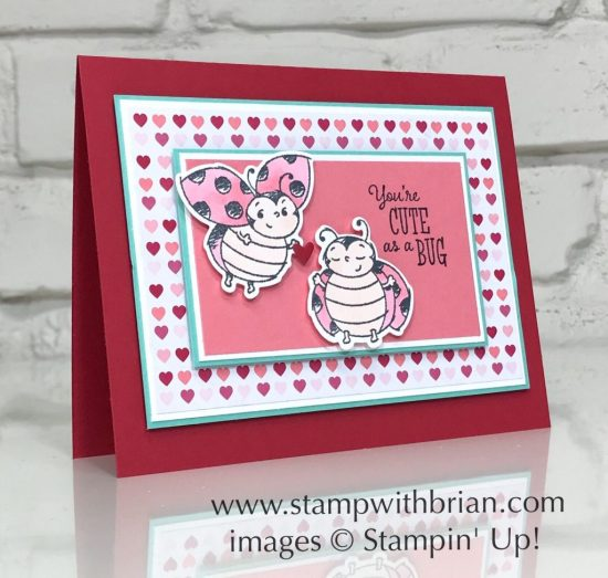 Little Ladybug, Ladybugs Dies, Stampin Up!, Brian King, Valentine's Day card