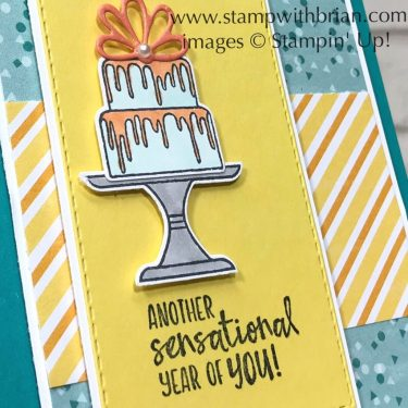 Sending You Thoughts, Piece of Cake, Stampin Up!, Brian King, birthday card