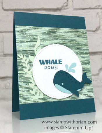 Whale Done Bundle, Whale Builder Punch, Stampin Up!, Brian King