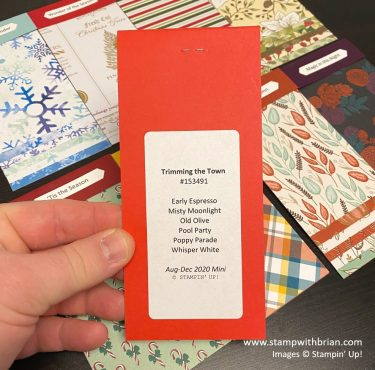 August - December 2020 Mini Catalog Swatch Books, Stampin Up!, Brian King 3