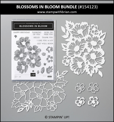 Blossoms in Bloom Bundle, Stampin Up! 154123