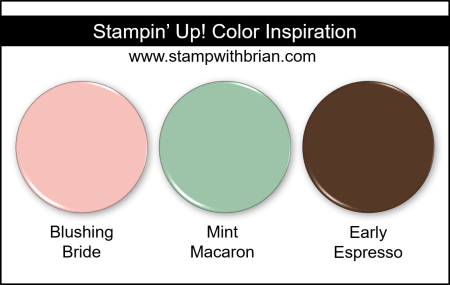 Stampin' Up! Color Inspiration - Blushing Bride, Mint Macaron, Early Espresso