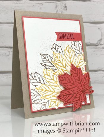 Gather Together, To a Wild Rose, Stampin Up!, Brian King