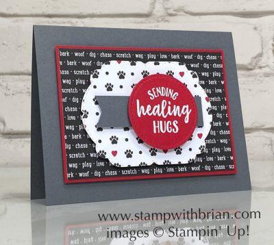 So Sentimental, Playful Pets Designer Series Paper, Stampin Up!, Brian King, pet card