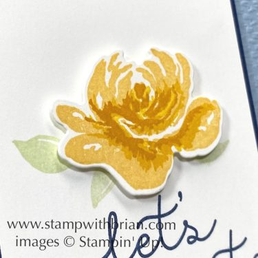 Bloom and Grown, All Things Fabulous, Stampin Up!, Brian King