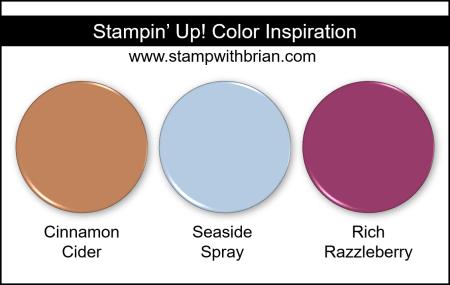 Stampin Up! Color Inspiration - Cinnamon Cider, Seaside Spray, Rich Razzleberry
