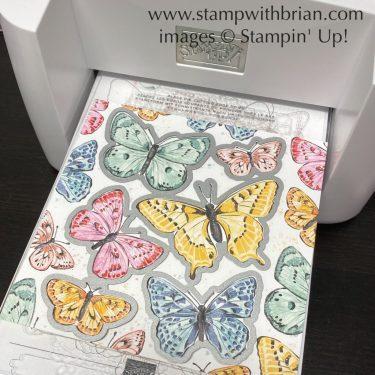 Butterfly Bijou, Butterfly Wings Dies, Stampin Up!, Brian King