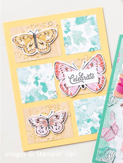 Butterfly Bouquet Collection, Stampin Up! samples