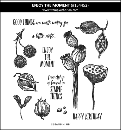 Enjoy the Moment, Stampin Up! 154452
