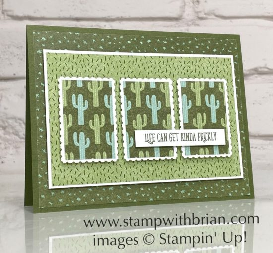 Flowering Cactus Product Medley, Stampin Up!, Brian King