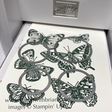 Butterfly Brilliance Spotlighting, Stampin Up!, Brian King