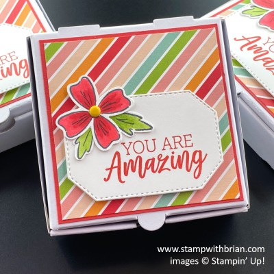 Flowers of Friendship, You are Amazing, Stampin Up!, Brian King