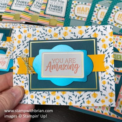 You Are Amazing Project Kit, Stampin Up!, card 2