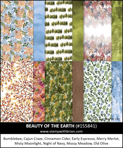 Beauty of the Earth Designer Series Paper, Stampin Up!, 155841