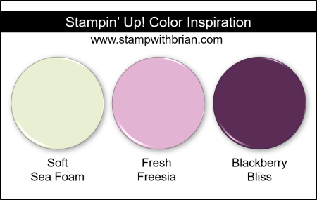 Stampin Up! Color Inspiration - Soft Sea Foam, Fresh Freesia, Blackberry Bliss