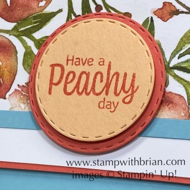 Sweet as a Peach Bundle, Picture This Dies, Stampin Up! Brian King
