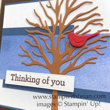 Beauty of Friendship Bundle, Stampin Up!, Brian King, thinking of you card