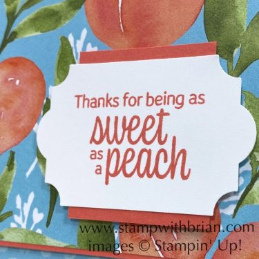 Sweet as a Peach, Stampin Up!, Brian King, thank you card