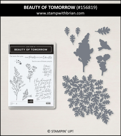 Beauty of Tomorrow Bundle, Stampin Up! 156819