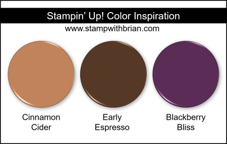 Stampin Up! Color Inspiration - Cinnamon Cider, Early Espresso, Blackberry Bliss