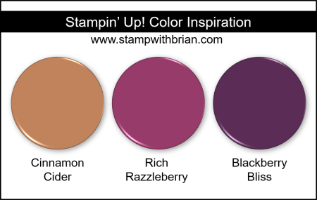 Stampin Up! Color Inspiration - Cinnamon Cider, Rich Razzleberry, Blackberry Bliss