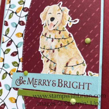 Stars are Shining, Sweet Stockings Designer Series Paper, Stampin Up!, Brian King