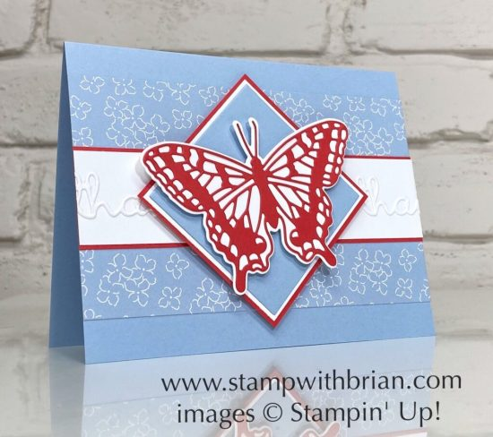 Brilliant Wings Dies, Well Written Dies, Stampin Up!, Brian King, thank you card