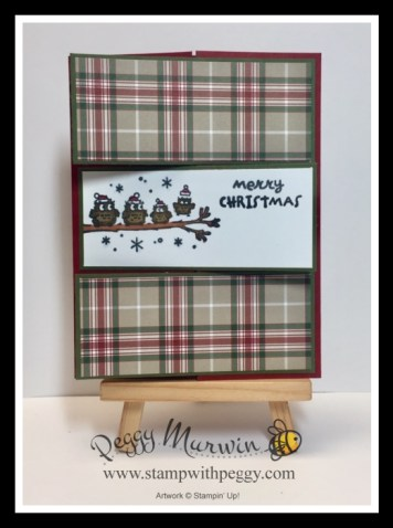 Have a Hoot Stamp Set, Plaid Tidings Designer Paper, Fall Fest, Christmas, Stamp with Peggy