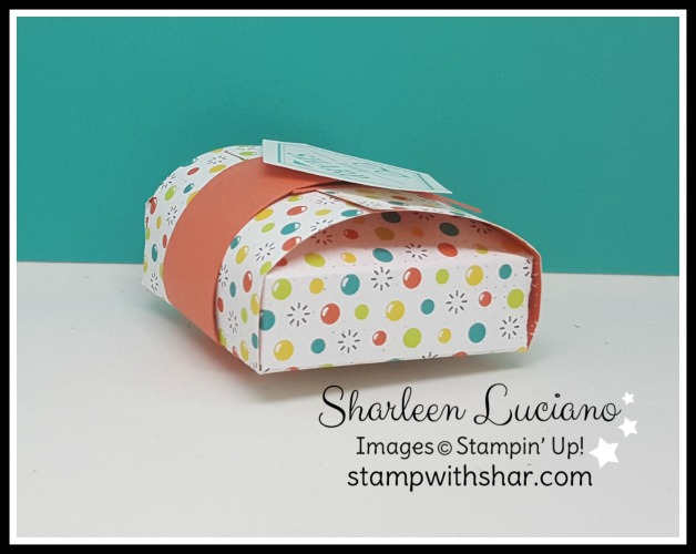 Bubbles & Fiz Stampin' Up!