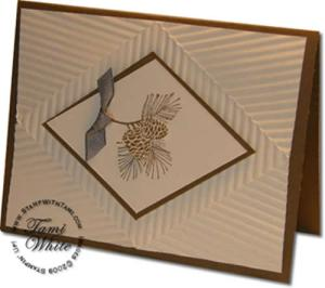 Stampin Up Autumn Days Video