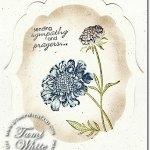 VIDEO TUTORIAL: Field Flowers Sympathy