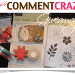 WIN! Comment Craze Giveaway