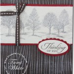 CARD: Lovely as a Tree Dryer Sheet Beauty and Video