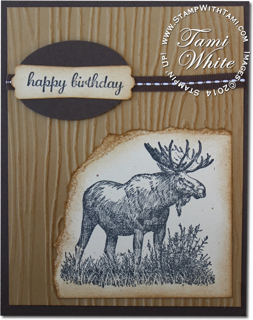 Card Take A Walk On The Wild Side Stampin Up