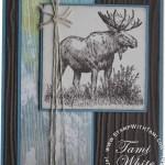 CARD: Walk in the Wild Moose