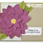 CARD: Gorgeous Poinsettia Wow Card & Video