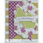 CARD: You're Amazing from December Paper Pumpkin kit