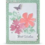 CARD: Best Wishes from Blooms and Wishes
